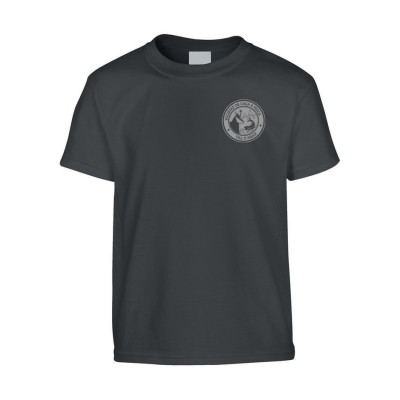 1-camisetas-infantil-gris