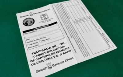 Nuevos carnets obligatorios, de captura de hembra de ciervo en la Val 'Aran