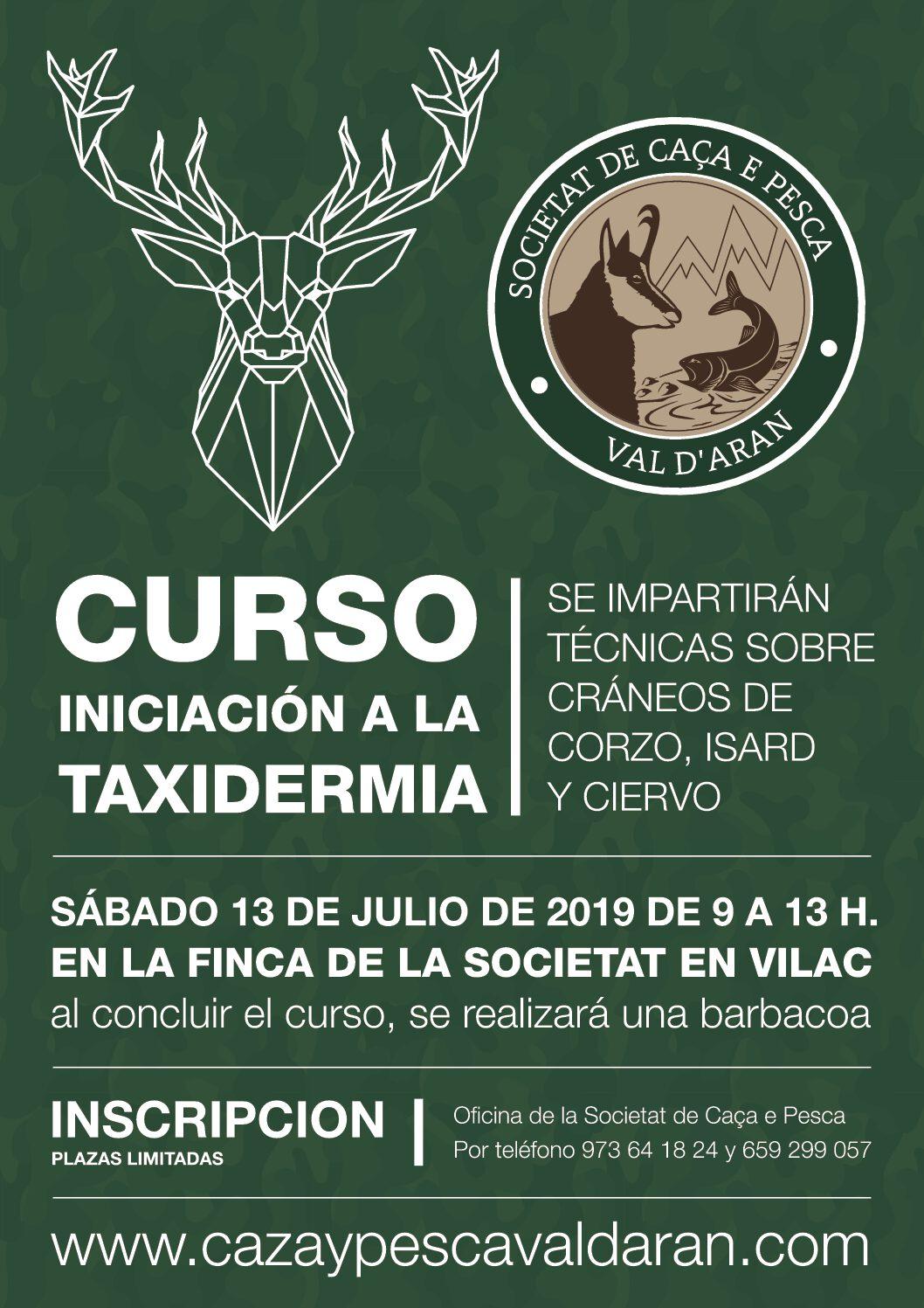 CURSO DE INICIACIÓN A LA TAXIDERMIA